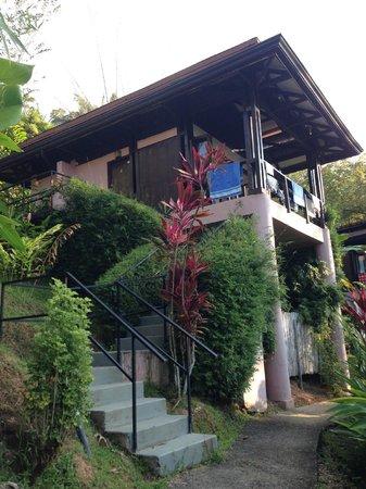 TikiVillas Rainforest Lodge: villas from below