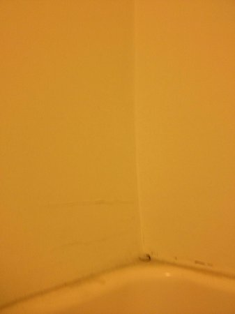 Red Roof Inn & Suites Indianapolis Airport: crack in wall