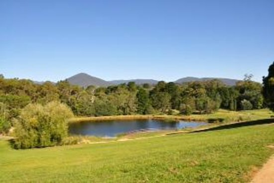 RACV Healesville Country Club: Stunning views from our room