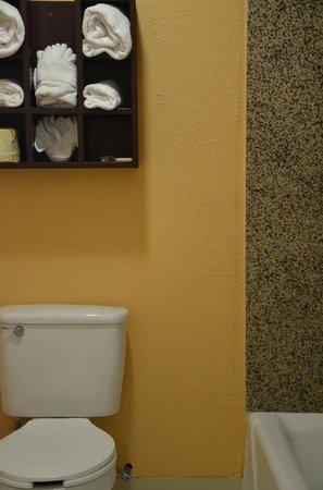 Americas Best Value Inn- Stuttgart: Bathroom
