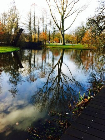 Conscious Hotel Vondelpark: Vondelpark in the morning