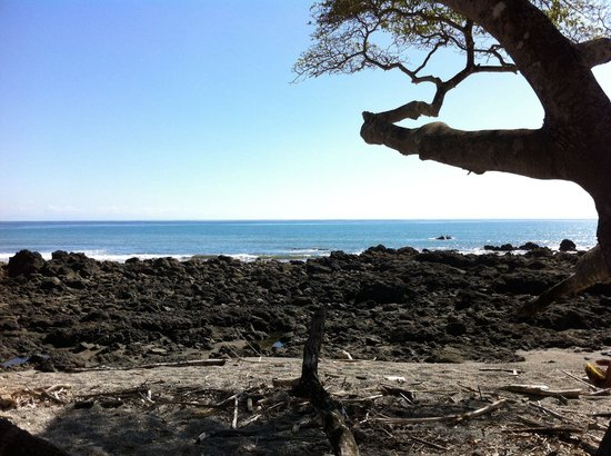 El Pinto Horseback Riding Expeditions: View from our spot where we had a break after galloping on the beach, so beautiful!