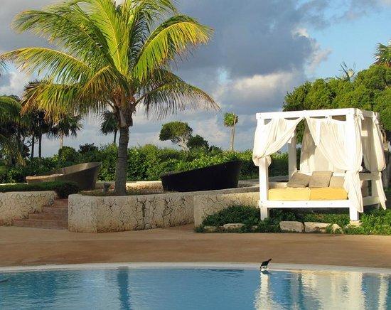 Melia Buenavista : Beside the main pool