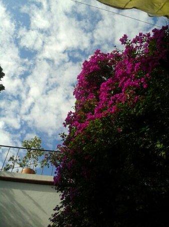 Hotel Villa del Villar: vista del desayuno