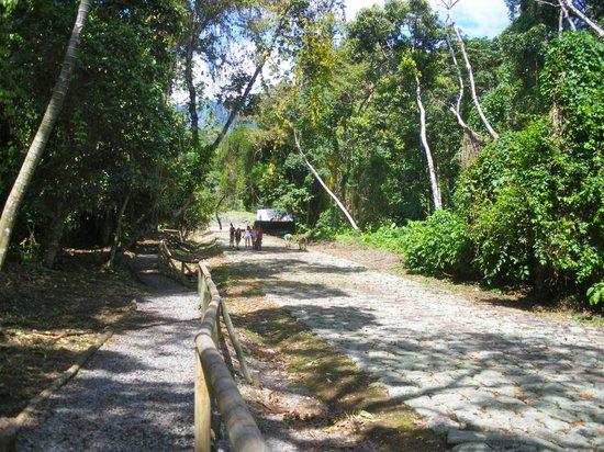 Guayabo National Park and Monument: Calzada Canagra