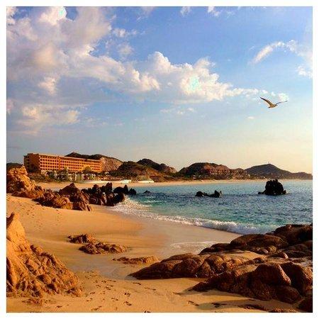 Marquis Los Cabos All-Inclusive Resort & Spa: View of Secrets