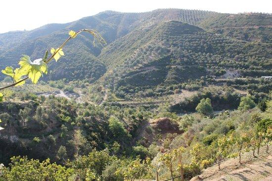Botanical Park & Gardens Of Crete : Botanical Park Of Crete