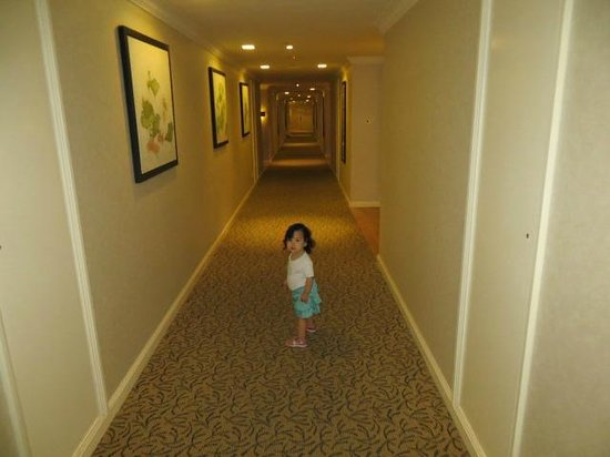 Hotel Equatorial Ho Chi Minh City : We Loved the hallways!