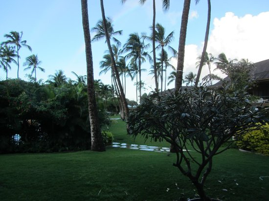 Aston Maui Kaanapali Villas: what you see from the room