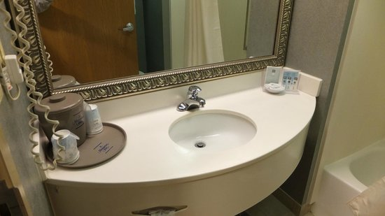 Hampton Inn Myrtle Beach - West: Bathroom Sink 2