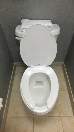 Hampton Inn Myrtle Beach - West: Toilet