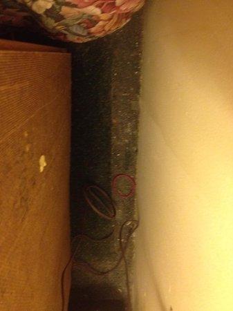 Orangeville Motel: carpet