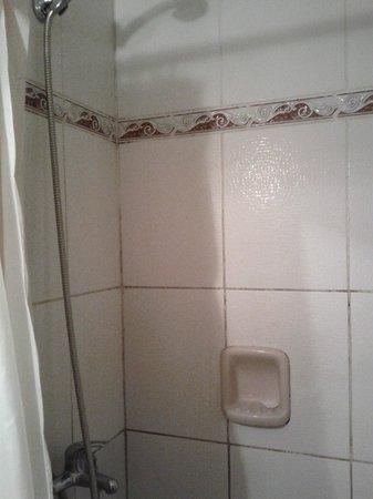 Nuevo Hotel Plaza: Banheiro minúsculo e antigo
