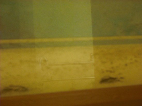 Howard Johnson Enchanted Land Hotel Kissimmee FL : mold growing in picture