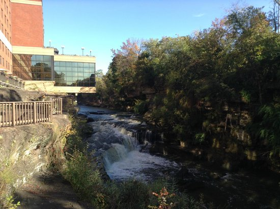 Sheraton Suites Akron/Cuyahoga Falls: View from common area deck