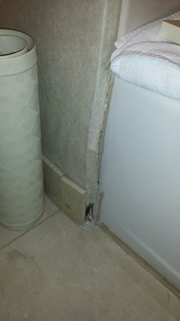 Hilton Madison Monona Terrace: Damaged wallpaper and tile base.