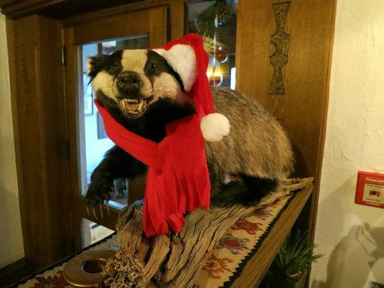 Hotel Eagles Inn: Christmas Badger