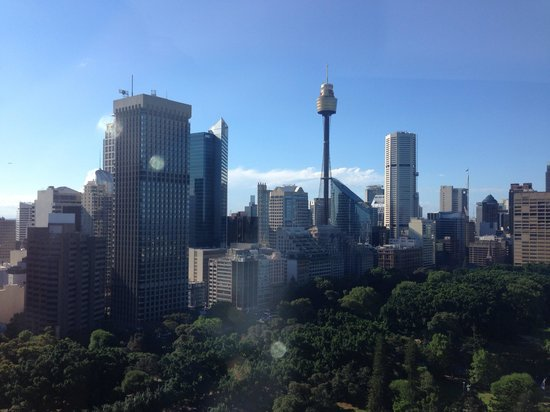 Pullman Sydney Hyde Park: View from the swimming pool