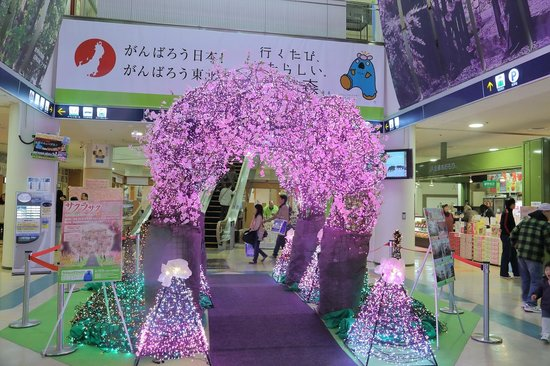 Aomori Prefecture Tourist Centerl ASPAM: イベントの展示