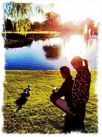 Fairmont Scottsdale Princess : feeding the ducks!