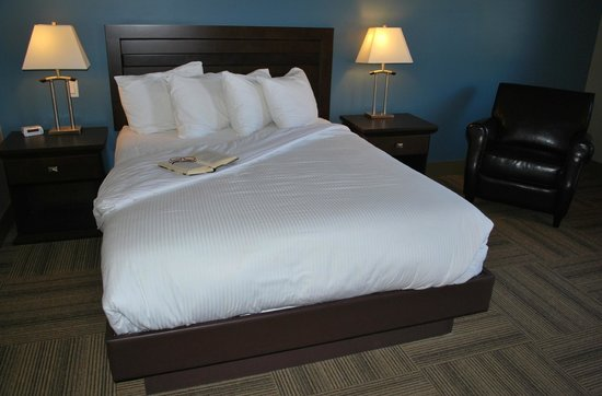 Vedder River Inn: King Size Bed