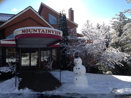 Mendon Mountainview Lodge: Snowman