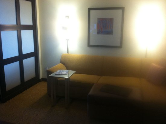 Hyatt Place Houston/Sugar Land: Couch view