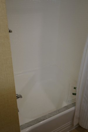 The Beverly Hilton: shower curtain