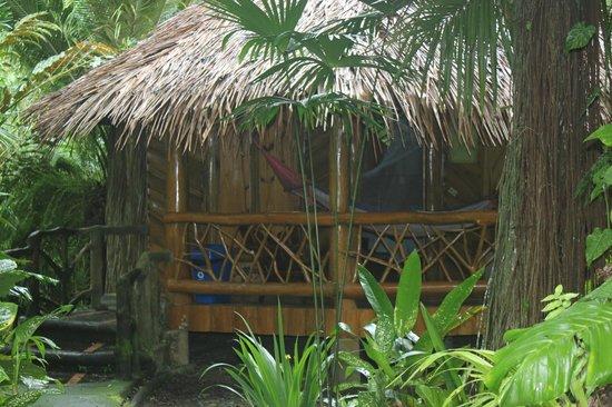 Hotel La Costa de Papito : Cabina