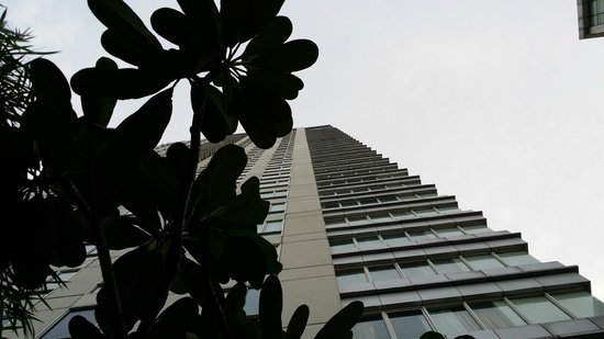 HARRIS Suites FX Sudirman: view of the hotel facade from pool