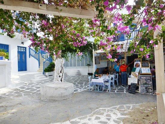 Opa Taverna : Restaurant