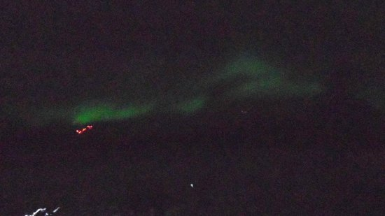 Alaska Northern Lights Tour: Not the greatest picture, but considering the camera, I have the Aurora