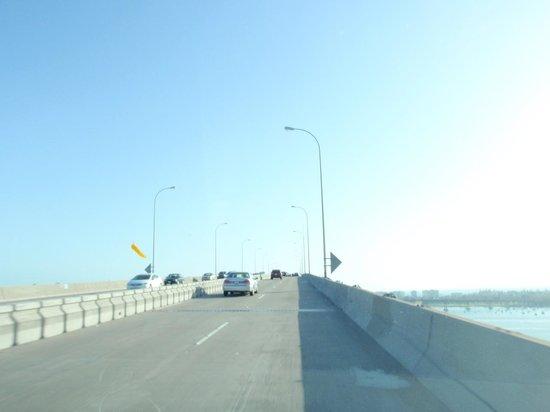 Coronado Bridge: コロナド橋からの眺め
