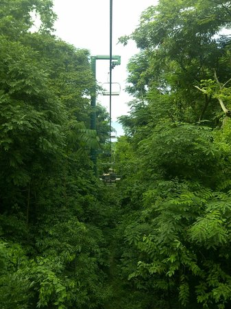 Rainforest Adventures Jamaica: The way down the chairlift