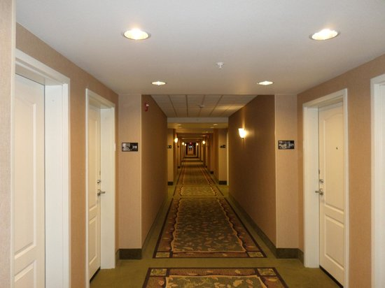 Hampton Inn & Suites Fairbanks: Hallway to rooms