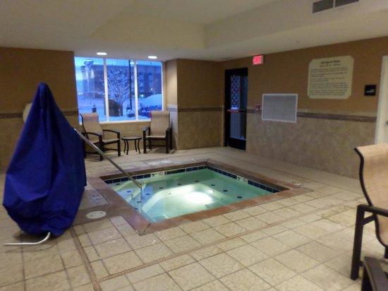 Hampton Inn & Suites Fairbanks: Hot tub
