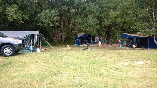 Hosanna Farmstay : Our great shady campsite