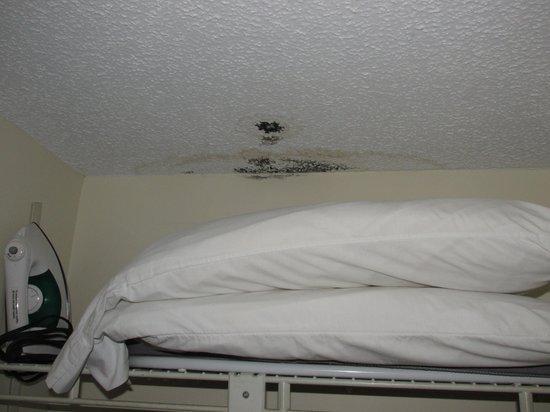 Oak Square At Gatlinburg: Black Mold Above Pillows