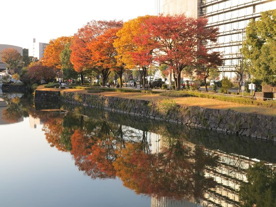 The East Gardens of the Imperial Palace (Edo Castle Ruin): Exterior of the gardens
