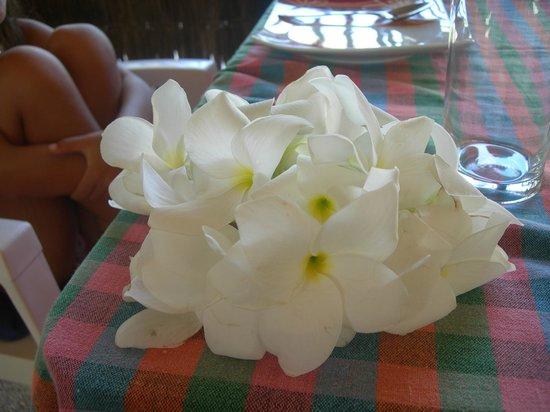 Happy Life Maldives Lodge : tavola