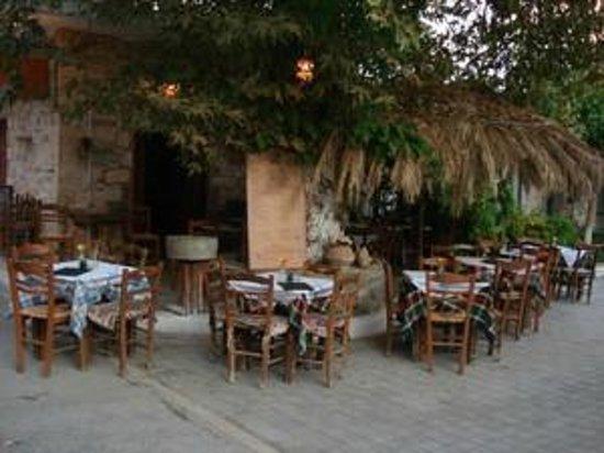 Platanos Restaurant and Bar : Platanos