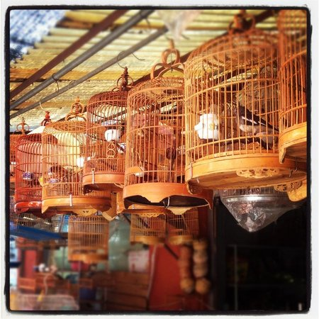 Shopping Tours Shanghai-Day Tour: Birdcages