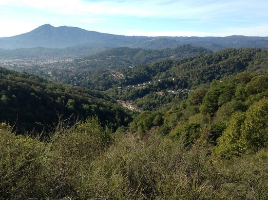 Stoked SF: View to thrill - Mount Tam