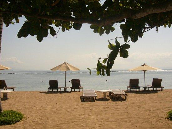 La Taverna Suites: la plage