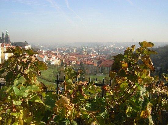 Questenberk: Vue de la salle de restauration