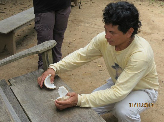 Refugio Amazonas: Sampling fresh coconut...