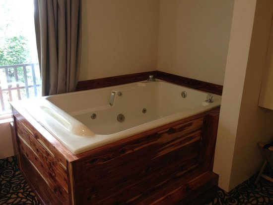 Alpine Motel: Jacuzzi in room