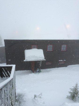 Kvitfjell Hotel: The Cottage