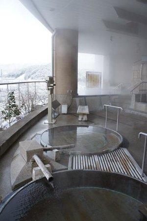 Hotel Associa Takayama Resort : bains chauds en exterieur, un régal!