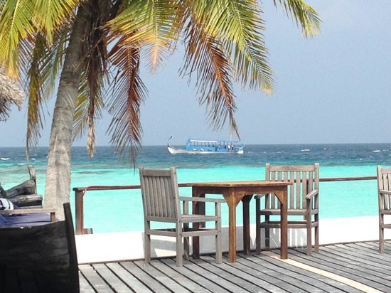 Makunudu Island : bar
